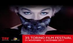 35° Torino Film Festival